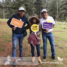 Green Central & Co Reforestación Nevado Toluca - Eventos sustentables